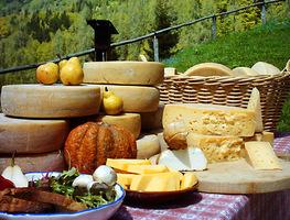 Agriturismo nel cuore del Monferrato